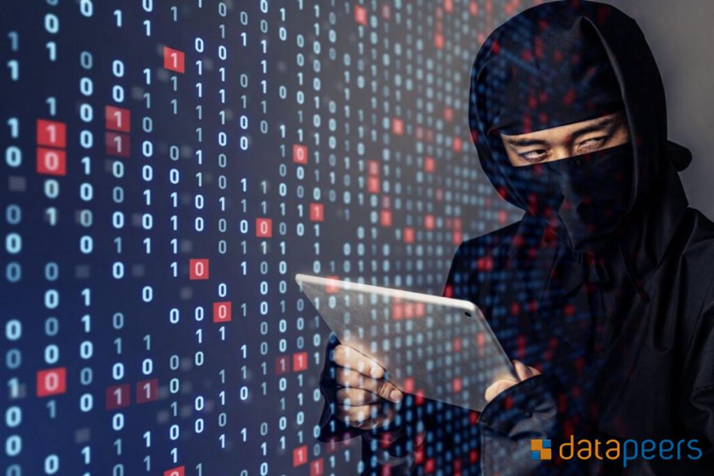 As vantagens de mascarar os seus dados com Datapeers